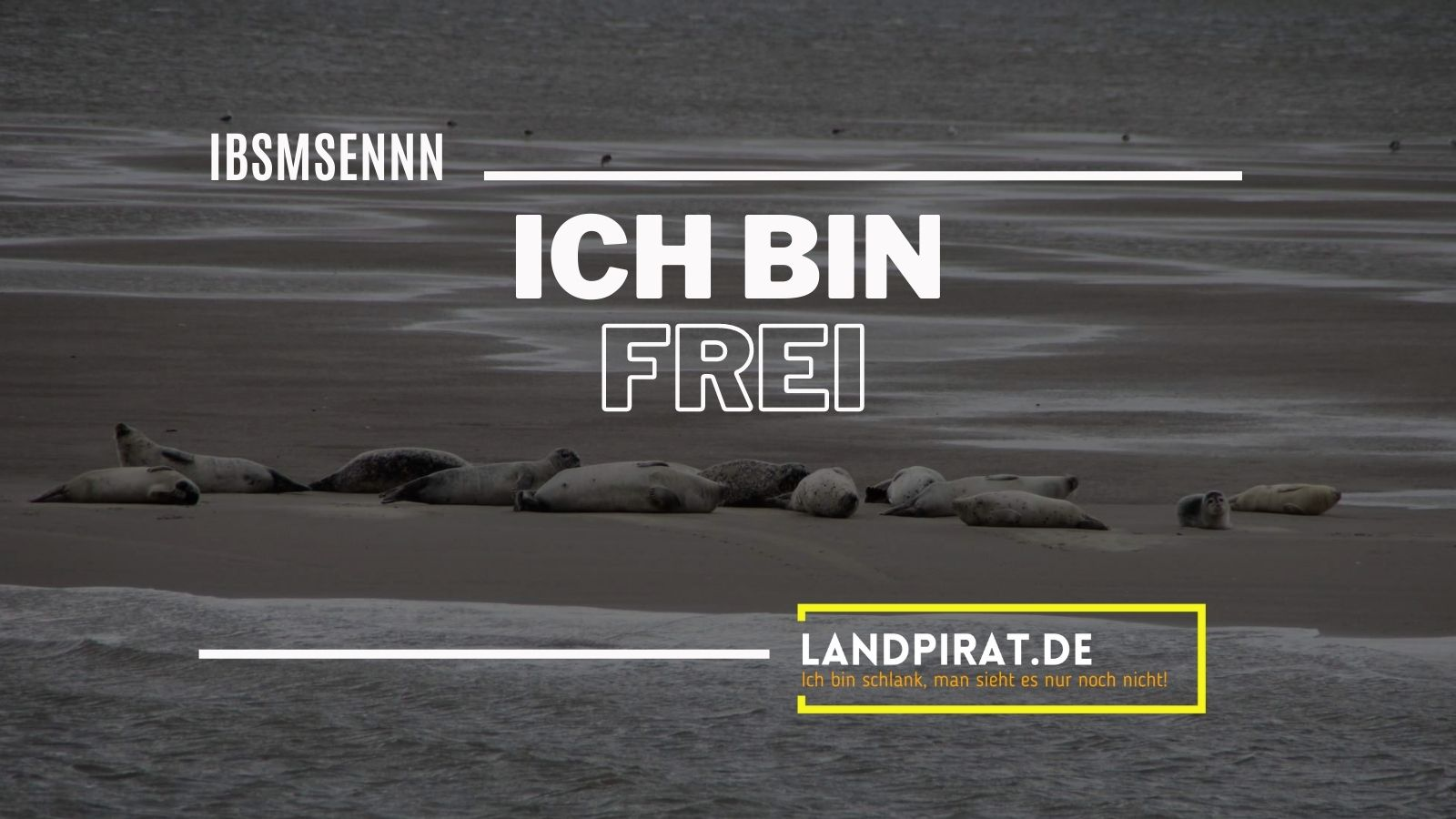 Read more about the article Ich bin frei