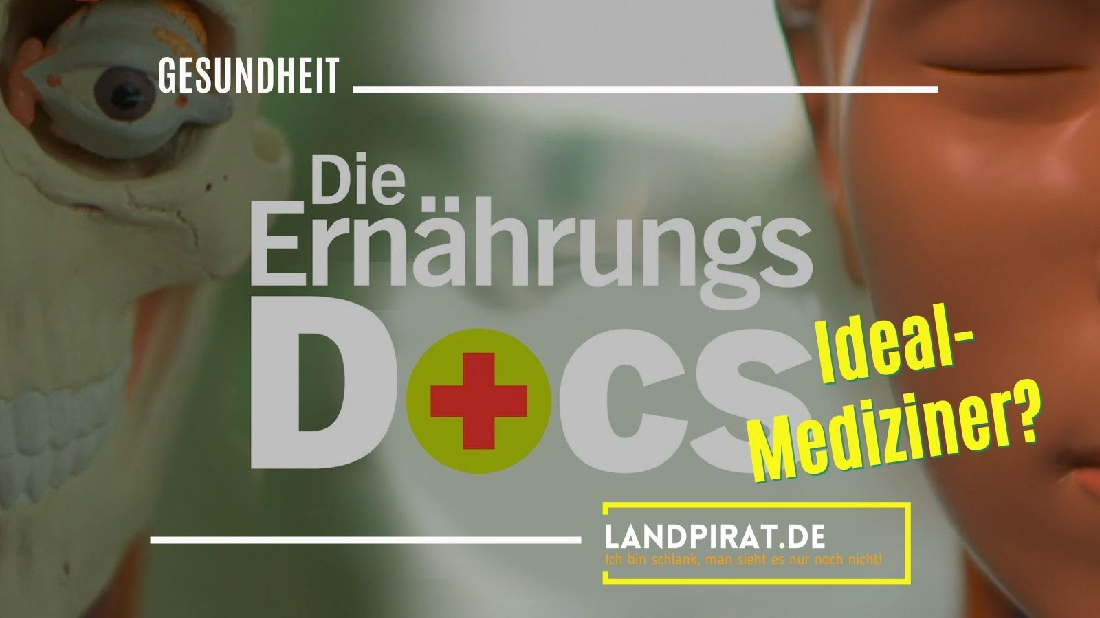 Read more about the article Die Ernährungs-Docs: Ideal-Mediziner?
